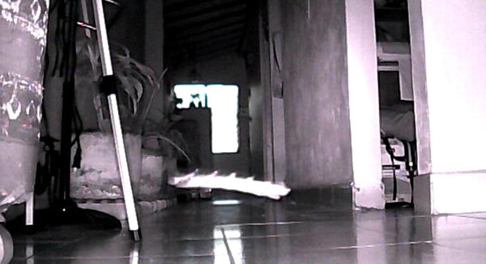 Posible ROD grabado en Medellín, Colombia